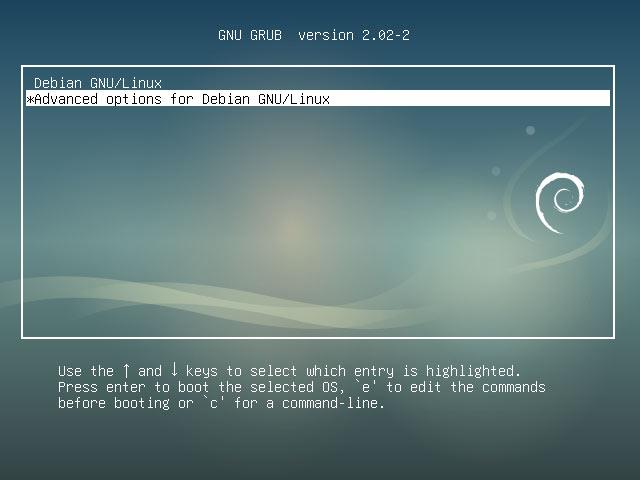 Debian Buster Boot Single User Mode Easy Guide - Debian Grub Splash