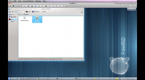 Install VMWare Tools on FreeBSD 9 5