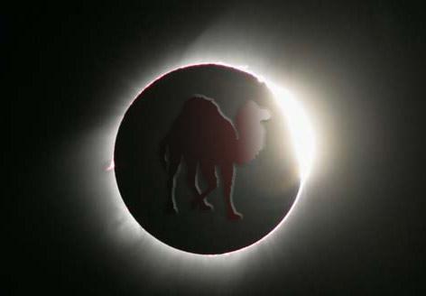Perl Eclipse
