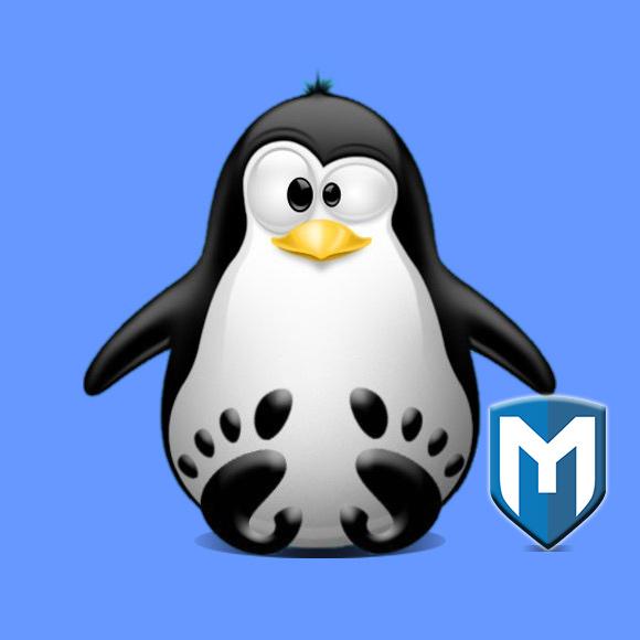 Step-by-step – Metasploit Framework Debian Bullseye Installation Guide