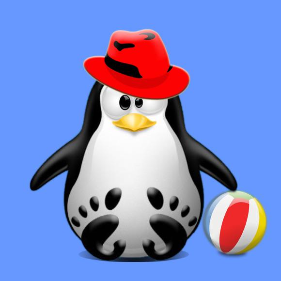 Step-by-step – Deja Dup LinuxFX Installation