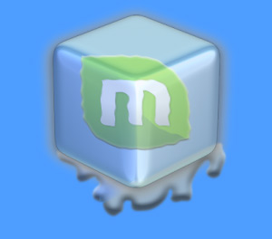 Netbeans on OpenSuse