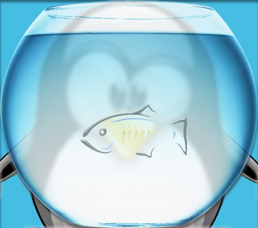 How to Install Glassfish 5.0 on Ubuntu Step by Step - Featured