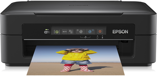 Driver Epson XP-220 Ubuntu How to Download and Install  - Featured