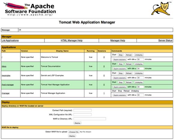 Apache Tomcat 8 Run Manager App