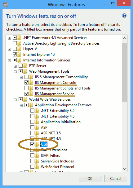 Enable IIS 8 with CGI for PHP on Windows 8 - Enabling IIS8 with CGI Support